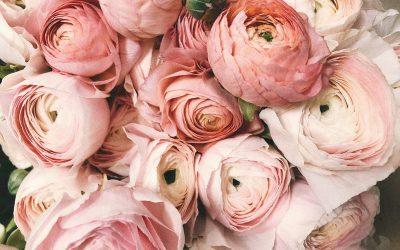 Send blomster med e-BLOMST.dk